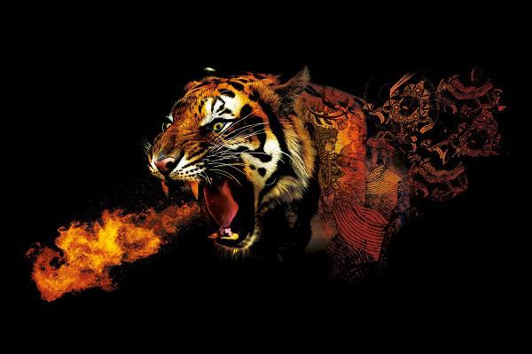 ZOOM-Tigre